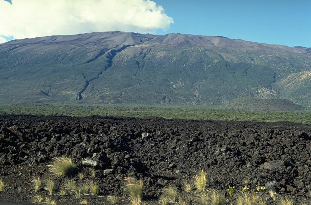 global volcanism program mauna kea