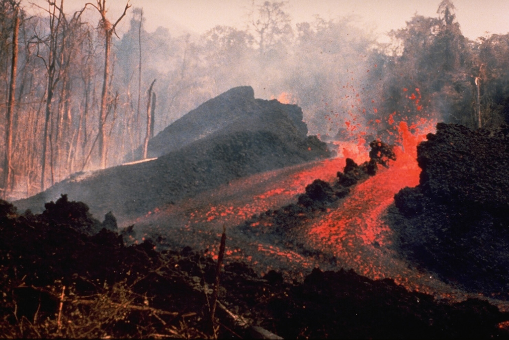 An E-flank fissure located 5 km from the summit produced an incandescent lava flow during 10-14 May 1978 that traveled 6 km to the Pandi River. Explosive activity took place from the summit crater of Ulawun over 7-13 May, accompanied by pyroclastic flows from a fissure high on the SE flank on 9 May. At least a dozen vents were active during this eruption.  Photo by K. Spellmeyer, 1978 (courtesy of Wally Johnson, Australia Bureau of Mineral Resources).