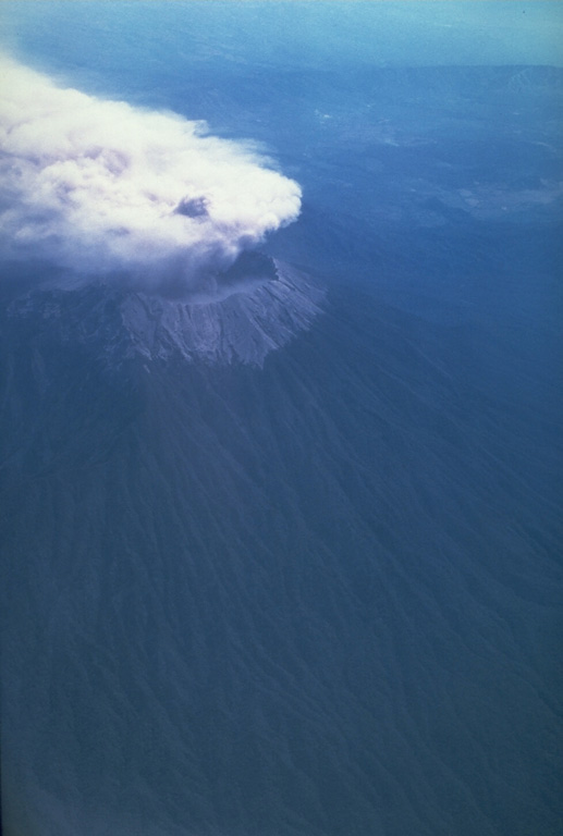 Ash plume rose above Raung volcano on 10 and 12 September, and 3 October 1991. Although the initial report was of flank vent activity, photographs such as this one on 12 September taken from the south, show the eruption occurring at the summit caldera and the plume being dispersed by the wind to the NW. Photo by Jeff Post, 1991 (Smithsonian Institution).