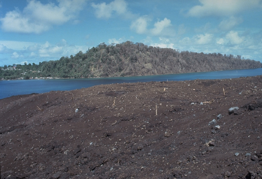 "Vegetation in the foreground and on the western tip of Lonthur Island in the background was destroyed and scorched by a directed blast produced by temporary deflection of the vertical plinian eruption column on May 9, 1988.  Witnesses reported that at 11:30 am ""the entire eruption column bent sidways towards the south,"" probably as a result of slumping of the uphill slope onto the vent.  About 2 cm of tephra was deposited on Lonthur Island, but the village of Lonthur (left) was spared. Photo by Tom Casadevall, 1988 (U.S. Geological Survey)."