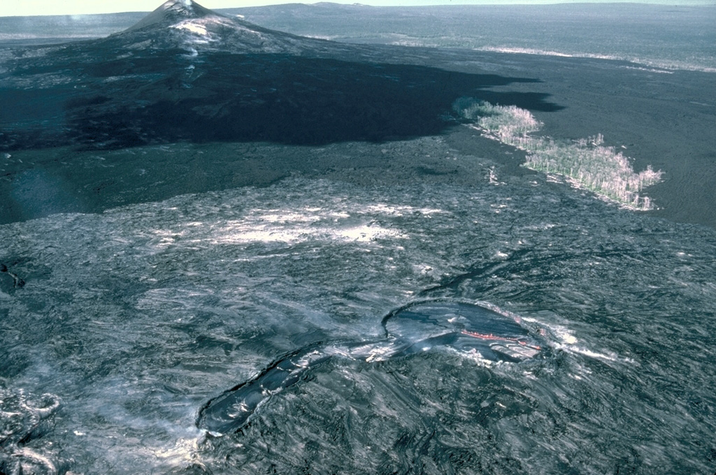 This 13 January 1987 view from the east shows the principal vents of the current eruption on Kilauea's East Rift Zone, taken four years after the start of the eruption. The Pu'u 'Ō'ō scoria cone to the left formed during the early stages of the eruption. Kūpaianaha to the lower right contains an actively convecting lava lake in this photo. The linear extension in the center foreground is at the head of a lava tube system, which fed lava flows that reached the coast.   Photo by J.D. Griggs, 1987 (U.S. Geological Survey).