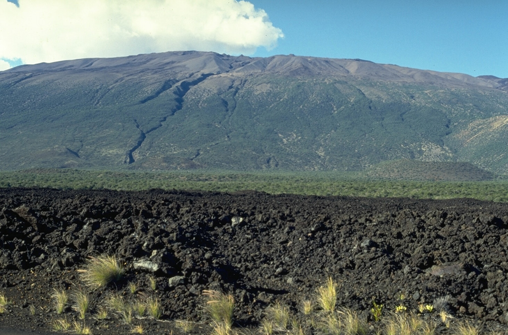 Mauna Kea is seen here from the S at the broad Humu'ulu Saddle between Mauna Kea and Mauna Loa. The lava flow in the foreground was emplaced during an 1843 eruption that originated on the NE rift zone of Mauna Loa. The flow traveled directly N to the Mauna Kea saddle, where it was deflected to the W. The irregular profile of the summit region of Mauna Kea is due to scoria cones and pyroclastic ejecta that are not present at Mauna Loa. Photo by Paul Kimberly, 1994 (Smithsonian Institution).