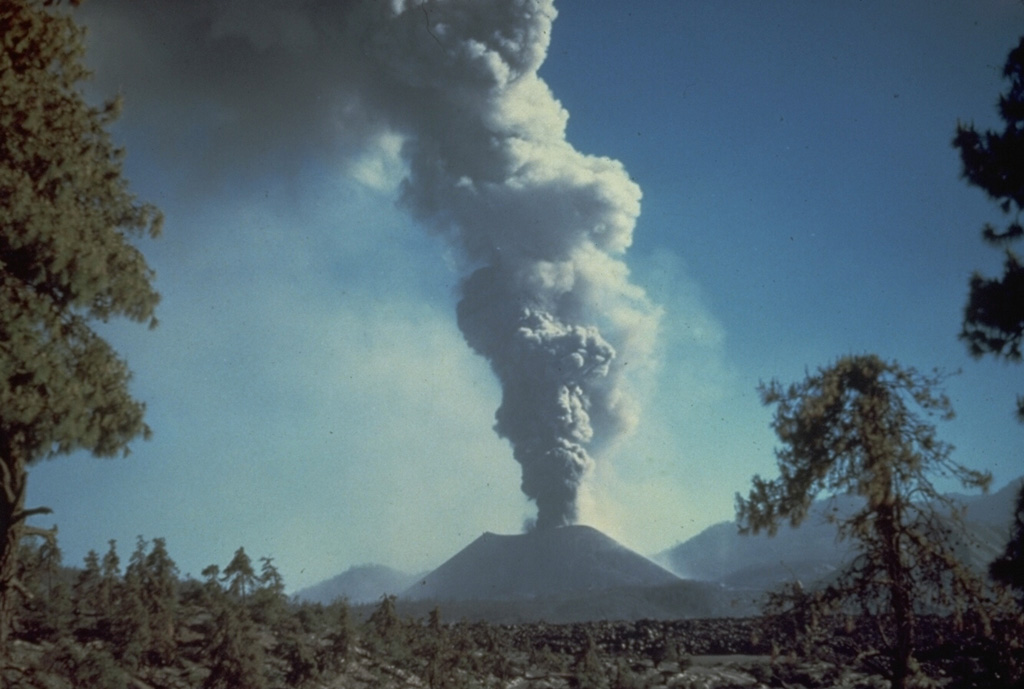 A gray convecting plume rises above Parícutin in October 1944.  Much of the eruption column consists of ash-poor steam.  The photo was taken from the north at the outskirts of the town of San Juan Parangaricutiro.  Lava flows in the foreground had already buried the town; the church tower seen in many other photos of the Parícutin eruption is hidden behind the small tree at the right. Photo by Carl Fries, 1945 (U.S. Geological Survey, published in Luhr and Simkin, 1993).