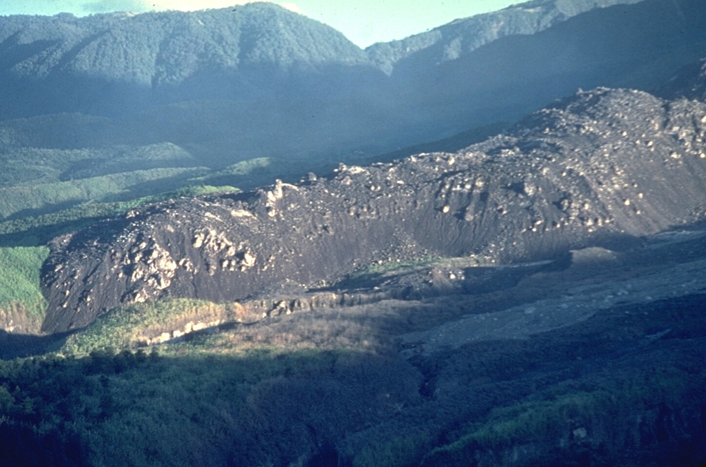 A dacitic lava flow that traveled to the SW from El Brujo vent of Santiaguito is seen in April 1963, a month after it ceased flowing. The slow-moving lava flow is approximately 50 m thick and extended about 1.5 km from the vent. El Brujo, near the western end of the Santiaguito dome complex of Guatemala's Santa María volcano, is the youngest at Santiaguito and was the focus of increased effusive activity from 1959 to 1963. Copyrighted photo by Dick Stoiber, 1963 (Dartmouth College).
