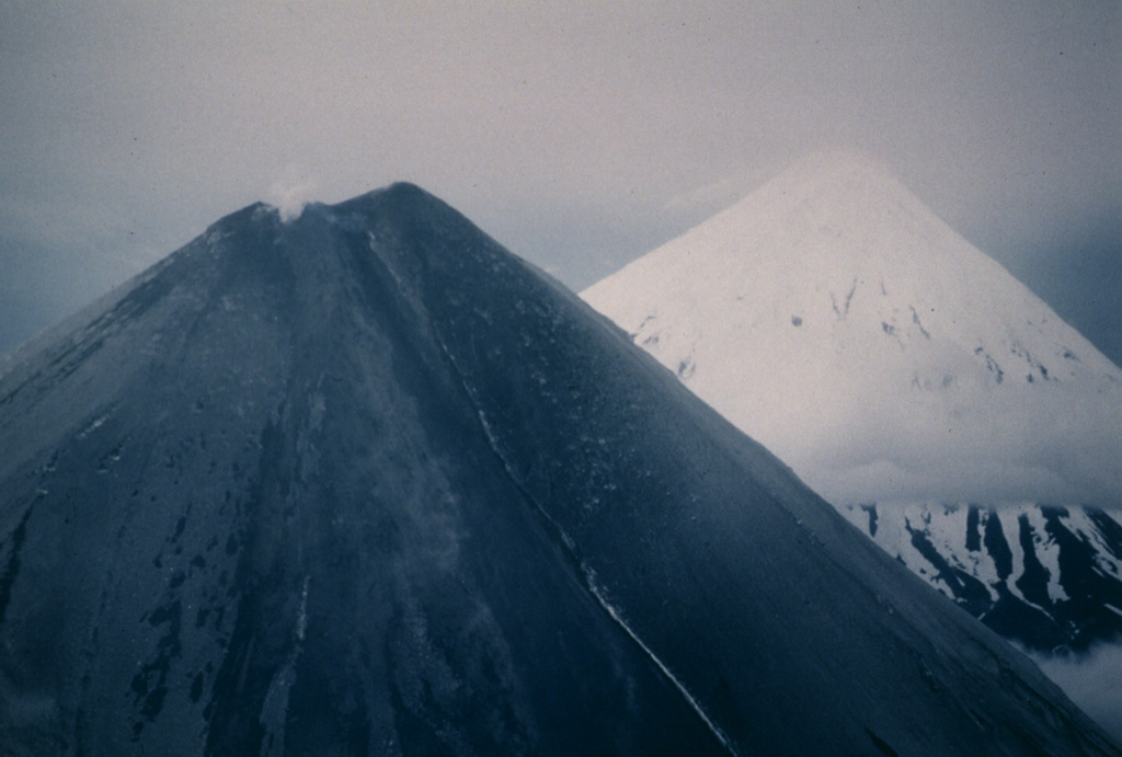 Both Cleveland (left) and Carlisle (right) volcanoes in the Aleutian islands are snow-covered, but the flanks of Cleveland in this 24 June 1987 photo, seen from the ESE, are darkened by ashfall deposits from an explosive eruption that began on 19 June. Photo by Harold Wilson, 1987 (Peninsula Airways), courtesy of John Reeder (Alaska Div. Geology Geophysical Surveys).
