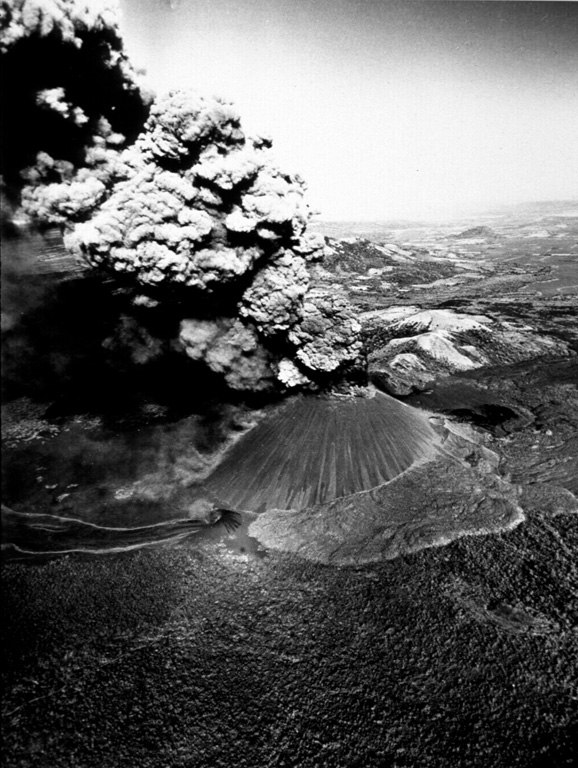 A thick ash column rises from Cerro Negro volcano in November 1968 in this aerial view from the south.  A narrow, dark-colored lava flow issues from Cristo Rey, a vent at the SW base of the cone (lower left).  The lighter-colored lava flow lobe below and to the right of the cone was erupted during 1960. Photo by Tom Bretz, 1968 (courtesy of William Melson, Smithsonian Institution).