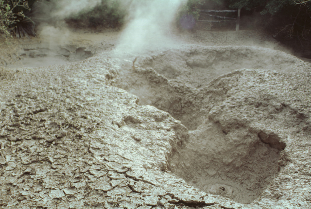 Steam rises from active bubbling mudpots at the Aguas Termales thermal area, one of several at the southern base of the Rincón de la Vieja massif in the national park of the same name. Photo by Paul Kimberly, 1998 (Smithsonian Institution).
