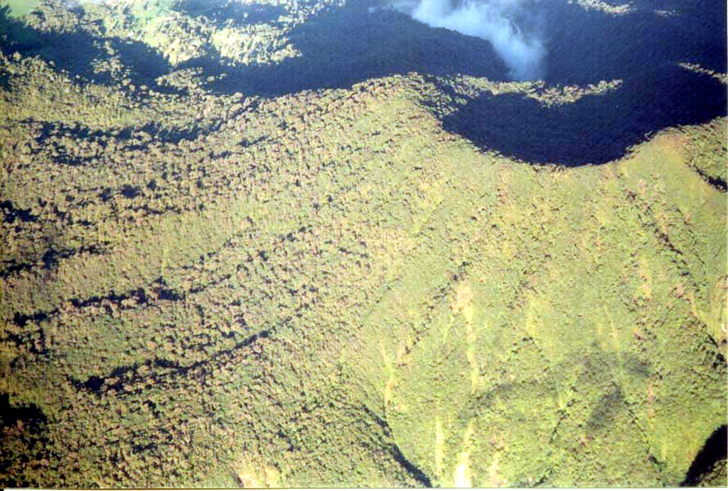 The summit crater of 2183-m-high Platanar volcano lies in the shadow at the upper right in this aerial view from the south.  Prehistorical lava flows are found on the western flank of Platanar.  The forested slopes of Platanar and Porvenir volcano to the south are habitat to abundant wildlife, including jaguars, foxes, pacas, and red- and white-faced monkeys, as well as exotic bird species and tropical snakes.  Tropical trees abound, including the cabbage palm, from which a local delicacy, the heart of palm, is extracted. Photo by Federico Chavarria Kopper, 2004.