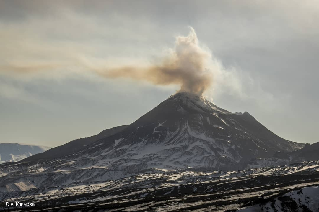 Global Volcanism Program | Report on Bezymianny (Russia) — June 2019